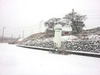 お・・お・・大雪です!!!